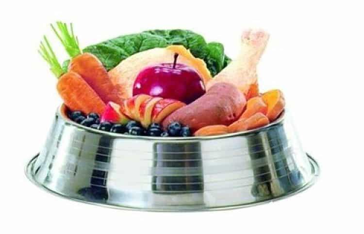 Verifica los alimentos saludables para tu mascota