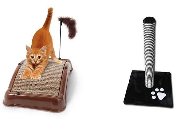 Horizontal o vertical dependerá de la personalidad y gusto de tu gato
