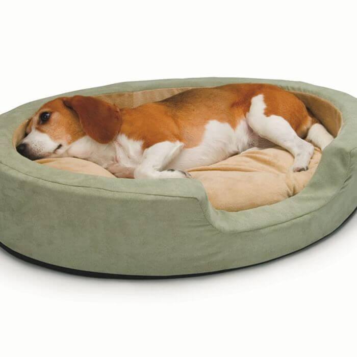 camas de descanso para perros