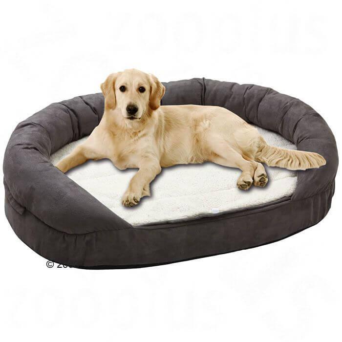 Las 7 preguntas y respuestas sobre las camas para perros - Camas grandes ...