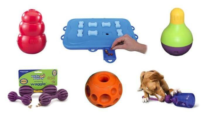 Best Dog Toys For Beagles