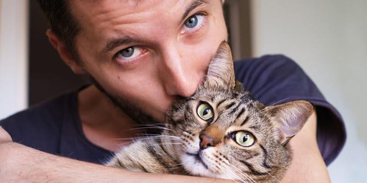 Se ha demostrado Los gatos sienten amor