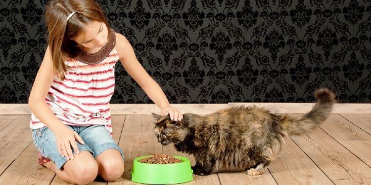 Loa niños pueden ayudar pero no ser los responsables de la mascota