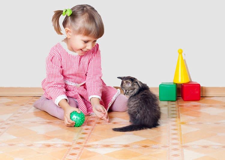 Enséñale a tu niño a jugar con su mascota de la manera correcta