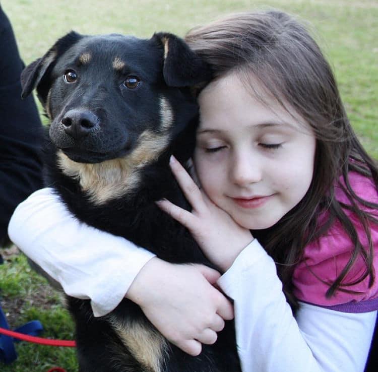 los perros mestizos pueden ser una elección perfecta para los niños, dales una oportunidad