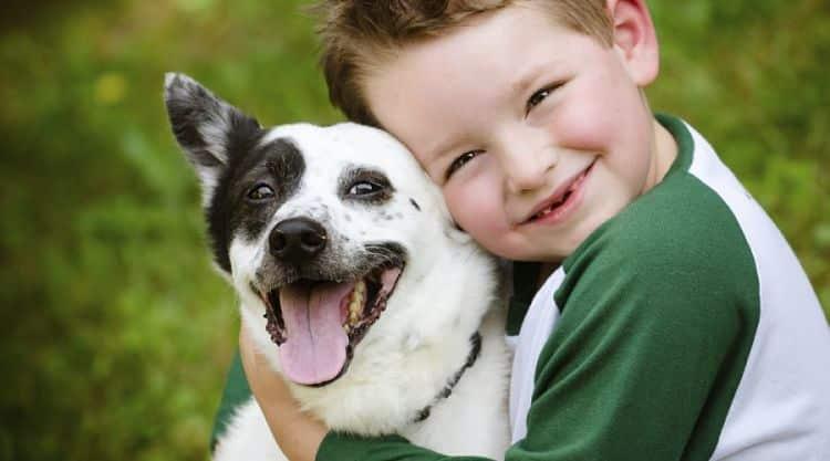 Los niños que crecen en compañía de un perro tienden a tener más autoestima y menos alergias