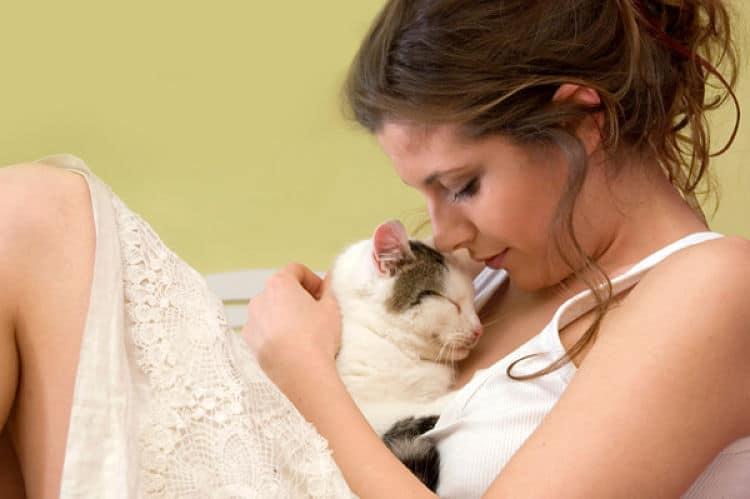 El ronroneo del gato puede ser beneficioso para la salud de los humanos