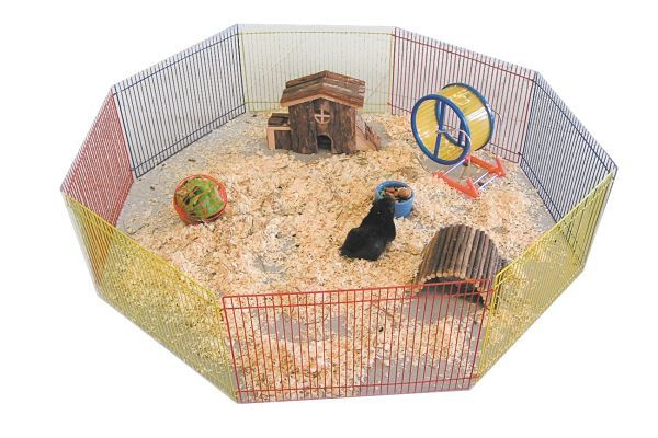 juguetes-para-hamsters-4