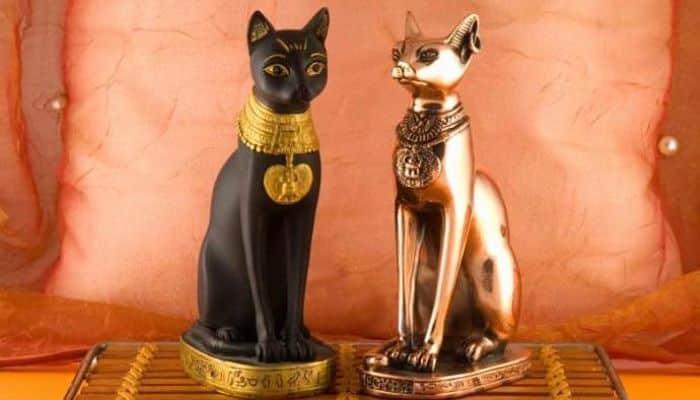 que representan los gatos en las distintas culturas