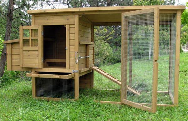 Jaula Para Conejos Tamano Adecuado Y Que Debe Contener