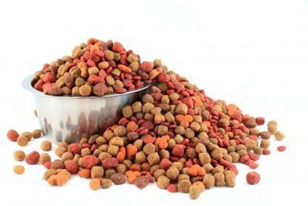 La comida para perros todo lo que necesitas conocer for Alimento para perros