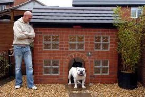 Guia para comprar casas para perros ideales for Casas para perros