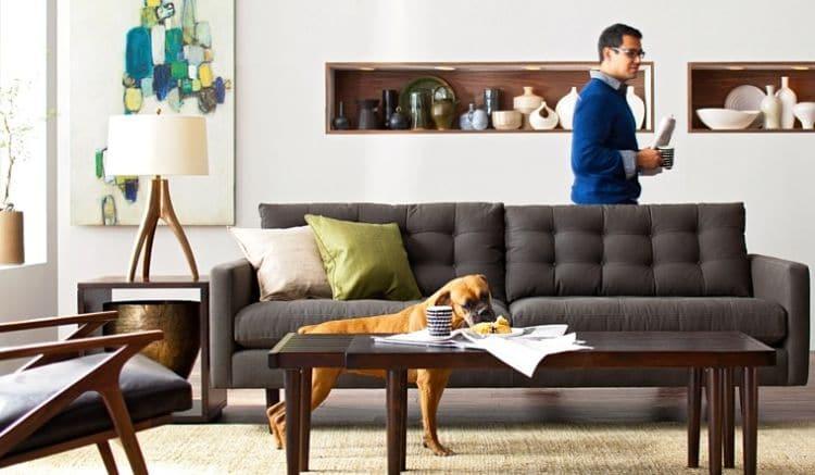 pisos alquiler que acepten perros