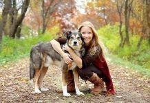 cómo dar en adopción a un perro