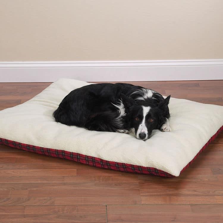 Como hacer una cama para perros en casa 3 ideas nuevas - Como hacer camitas para perros ...