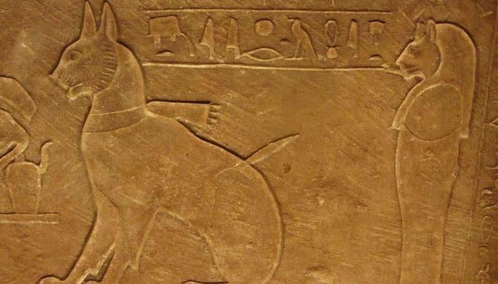 el antiguo egipto y los gatos