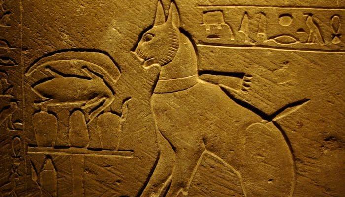 los gatos en el antiguo Egipto