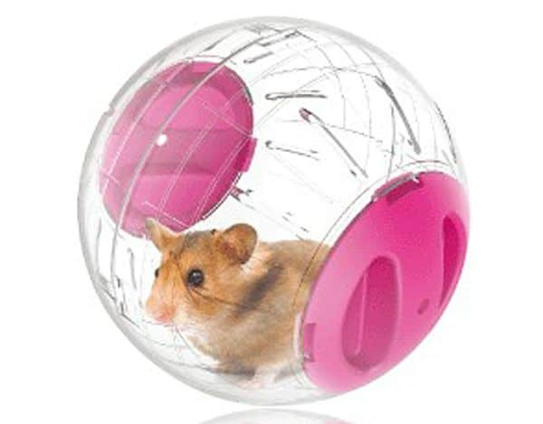 10 juguetes para h msters que debes tener en casa - Juguetes caseros para conejos ...