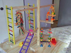 juguetes-para-periquitos-1