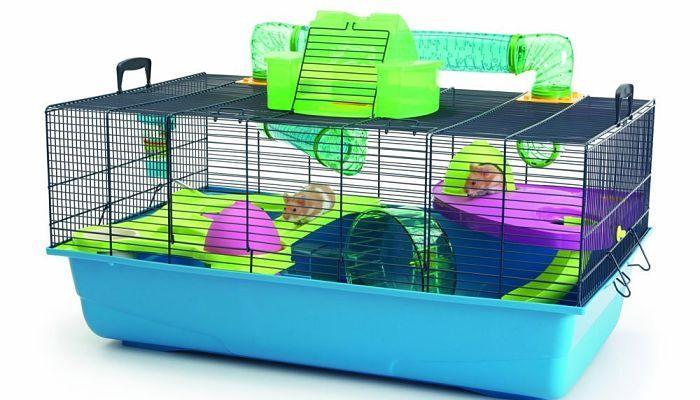 todo-lo-que-se-necesita-para-tener-un-hamster-1