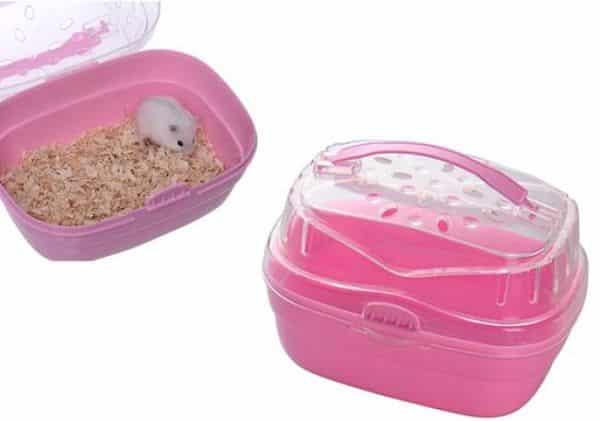 todo-lo-que-se-necesita-para-tener-un-hamster-7