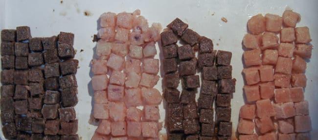 Alimentos para peces diferentes tipos y cu les son los for Comida congelada para peces