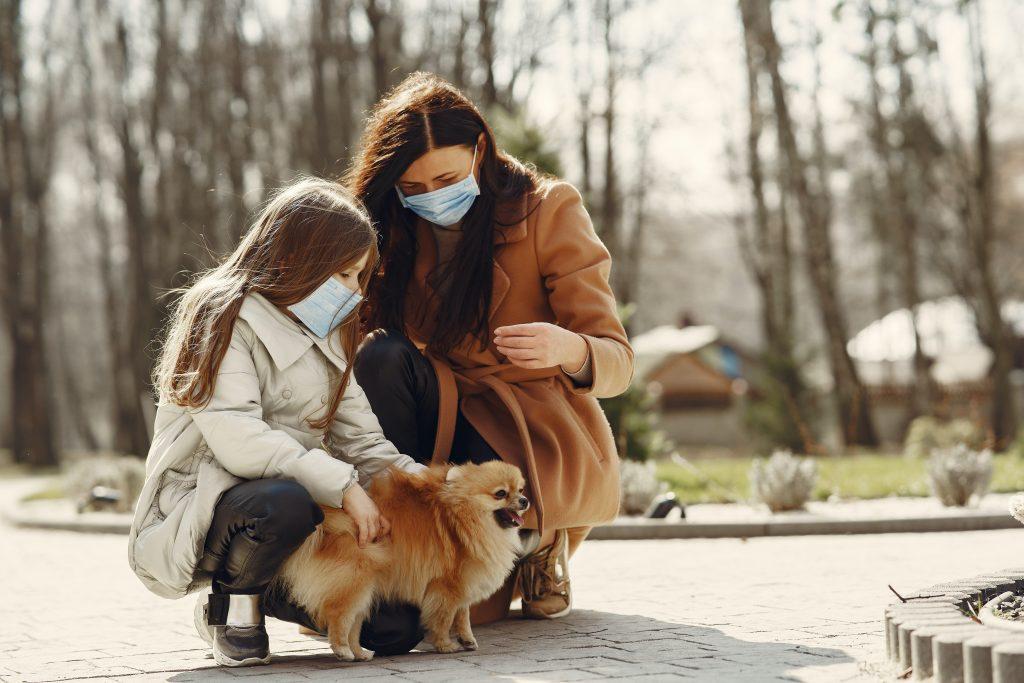 como cuidar a nuestros perros del del covid 19